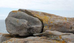 Photo la belle endormie par Lydie Loeillet